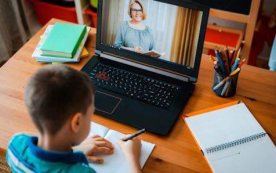 Izvajanje VIZ dela z učenci od 6. do 9. razreda